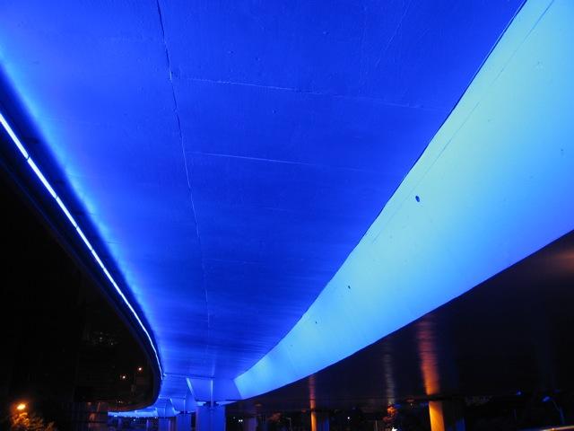 Blue Lines in Shanghai 2010_d0010432_142224.jpg
