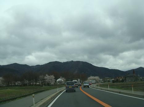 桜の道_a0014840_17574655.jpg