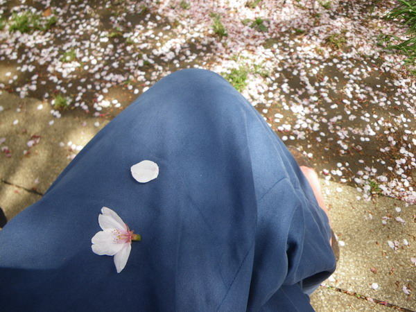 公園にて_c0174064_20372437.jpg