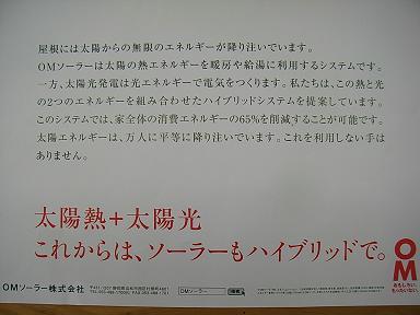 b0095981_11393983.jpg