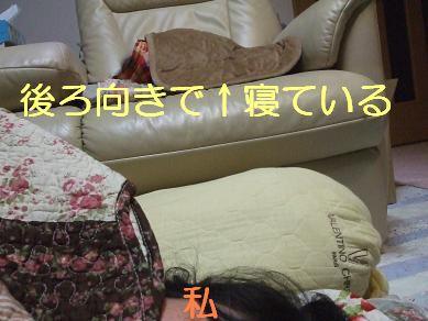 f0179203_8142021.jpg