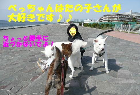f0121712_12573626.jpg