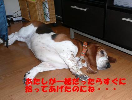 f0121712_132151.jpg