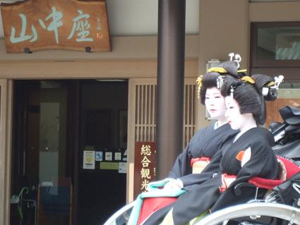 新花「小福」 _f0040218_191351.jpg