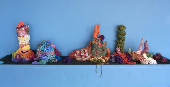 ダブリン、コーラルリーフ!     Coral Reef, Dublin!_b0029036_17302946.jpg