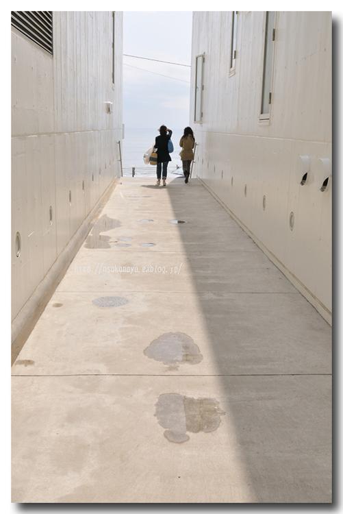 妻とNoriさんと湘南デート ☆ 茅ヶ崎で Lunch & 鎌倉七里ガ浜へ Go!_d0069838_10142823.jpg