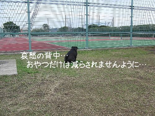c0225657_16321189.jpg