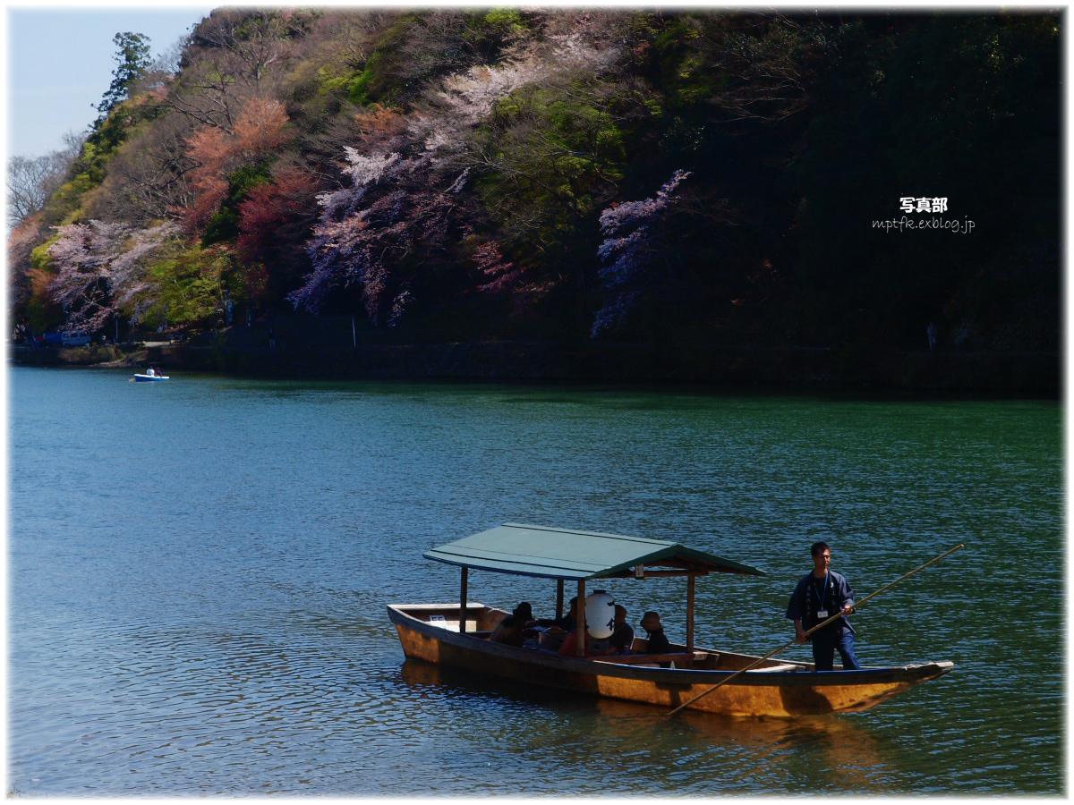 京都 嵐山 桜_f0021869_11115969.jpg