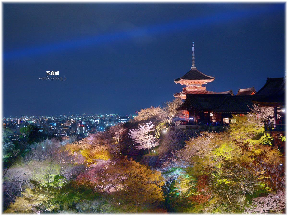 京都 清水寺 夜桜_f0021869_8461559.jpg