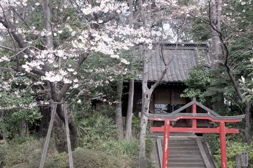 また上野へ行くまで見たこと_f0211178_1659212.jpg