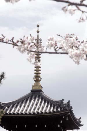 また上野へ行くまで見たこと_f0211178_1701538.jpg