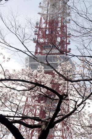 また上野へ行くまで見たこと_f0211178_1705333.jpg