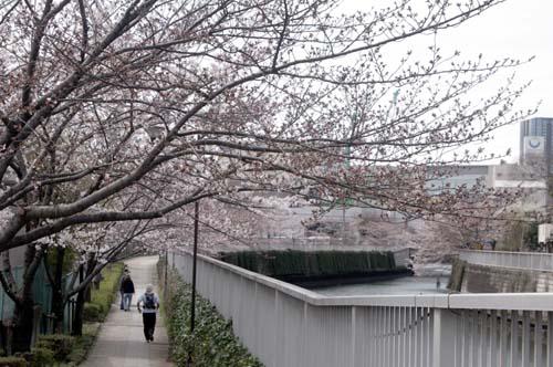 また上野へ行くまで見たこと_f0211178_170565.jpg