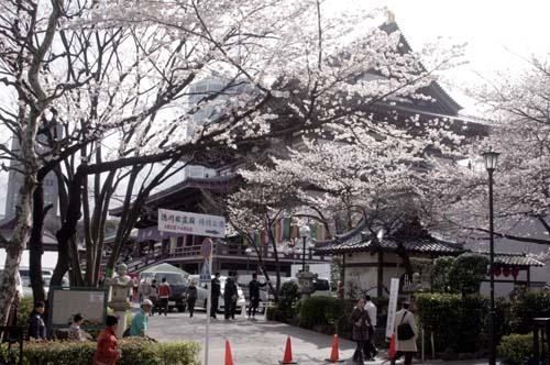 また上野へ行くまで見たこと_f0211178_1711041.jpg