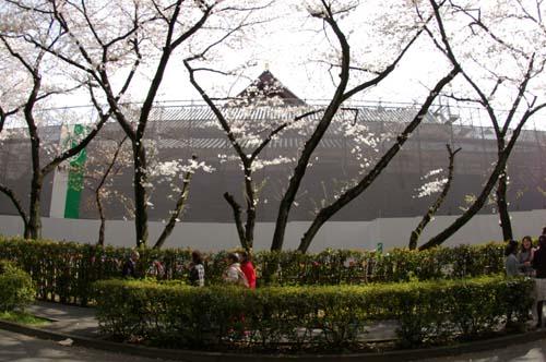 また上野へ行くまで見たこと_f0211178_1711964.jpg