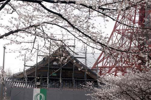 また上野へ行くまで見たこと_f0211178_171244.jpg