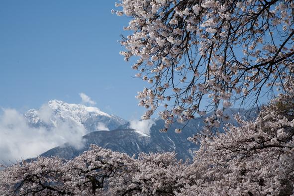 雪と桜と青空と_c0137403_21221841.jpg