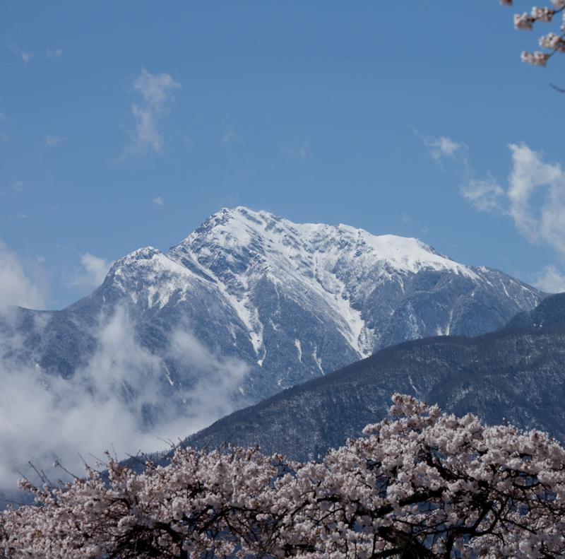 雪と桜と青空と_c0137403_21242452.jpg