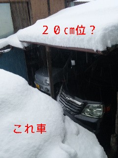 嘘っ………!_d0148408_5563098.jpg
