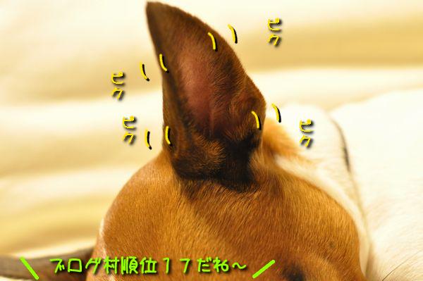 f0203612_22424118.jpg