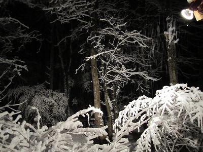 雪が! 【時々M's MEMO】_f0111415_010124.jpg