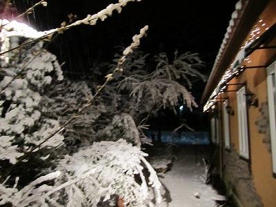 雪が! 【時々M's MEMO】_f0111415_0101813.jpg
