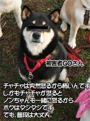 c0166018_1134321.jpg
