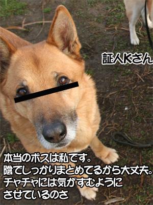 c0166018_1134988.jpg