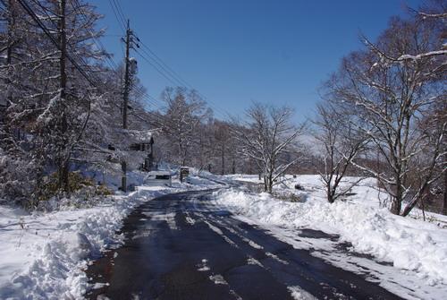 季節外れの雪_d0102327_12212081.jpg