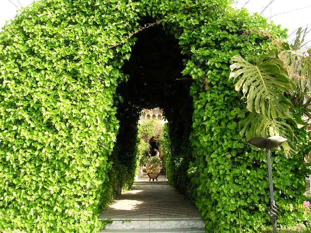 イタリア旅⑥⑦4月10,11日、タオルミーナ、チェファル観光_f0060461_13115038.jpg
