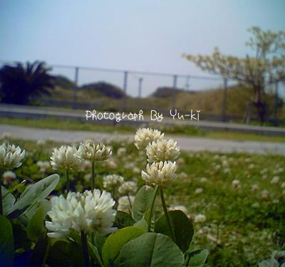 d0071962_0224999.jpg