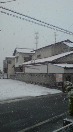 仙台市も雪_d0122374_971375.jpg