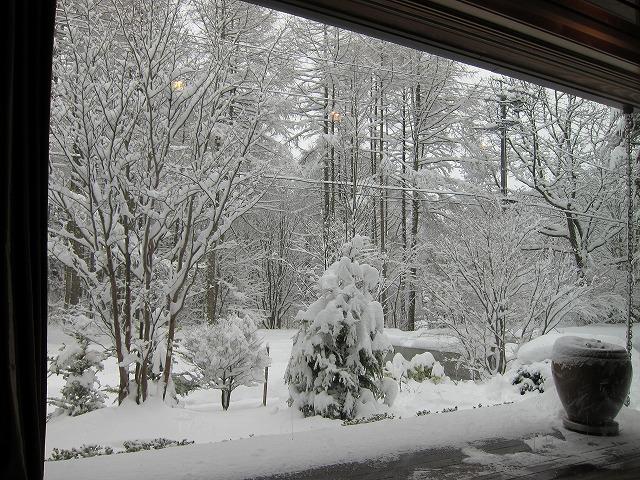 また雪!_d0133485_731083.jpg