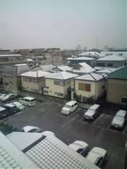 ゆ、雪!?_c0223192_17532837.jpg