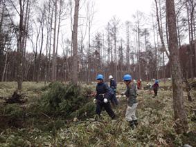 長野県原村の「エコラの森」の間伐作業に参加しました。_c0195909_16022100.jpg