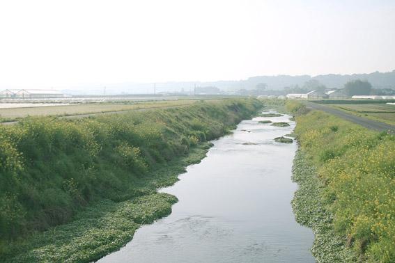 かの河原_c0107829_20301723.jpg