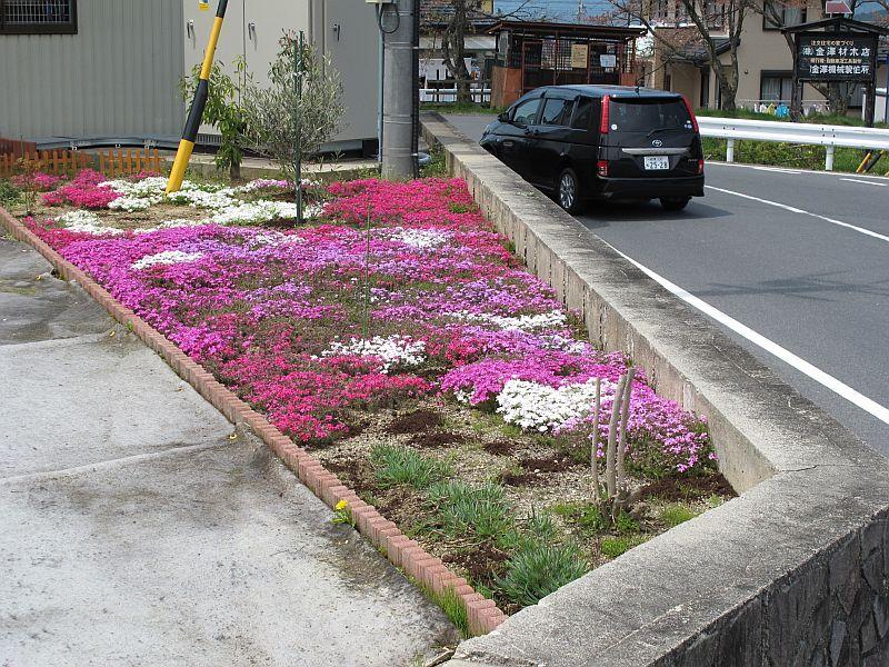 桜まつり最終日に特別なインプレッサを比較テスト_f0076731_16102465.jpg