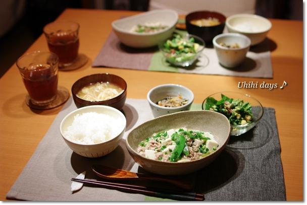 塩マーボー豆腐_f0179404_19582039.jpg
