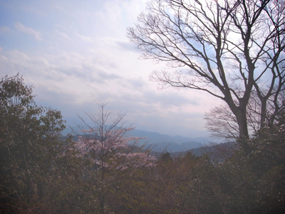 高尾山_e0177207_20204972.jpg