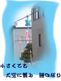 f0227323_1620219.jpg