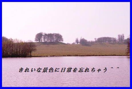 d0104926_2485994.jpg