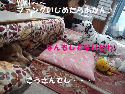 b0127531_13162776.jpg