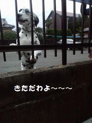 b0127531_1364691.jpg