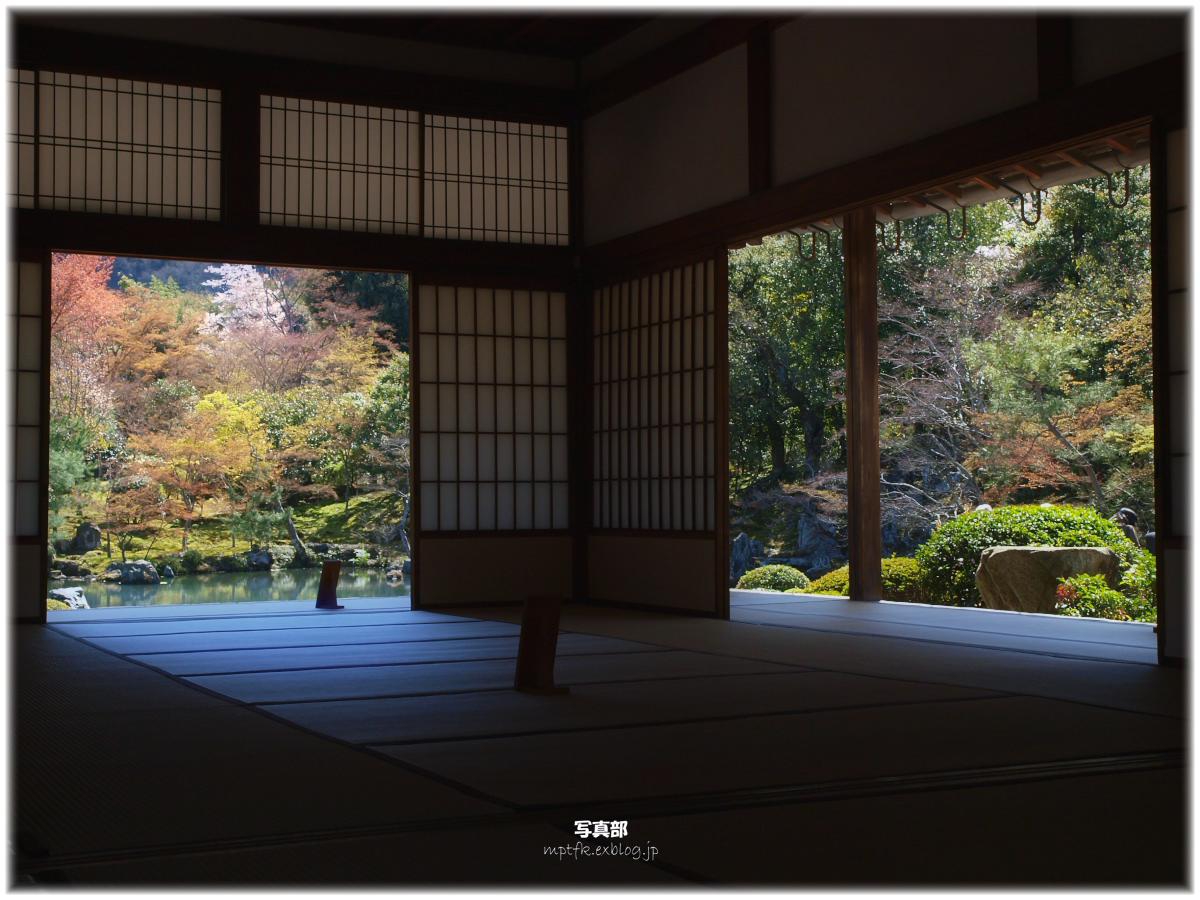 京都 天竜寺 桜_f0021869_23303285.jpg