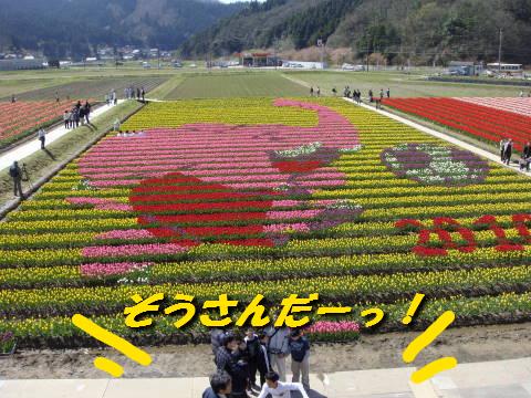 c0191597_16492650.jpg