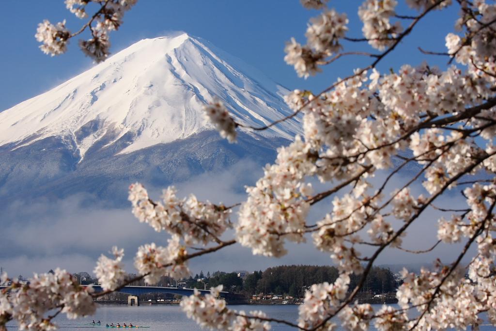 富士と桜_b0116600_23592874.jpg