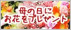 b0105010_253132.jpg