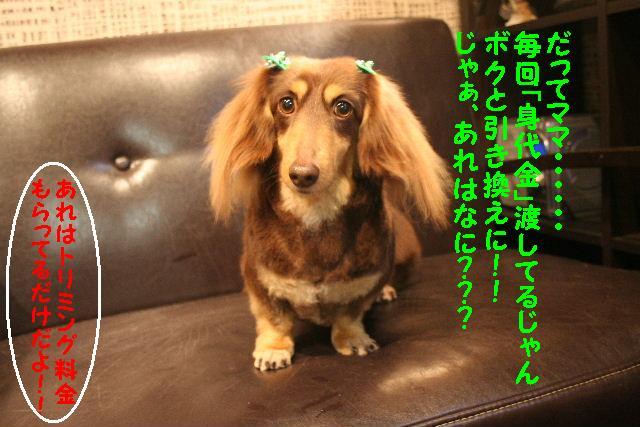 b0130018_1843746.jpg