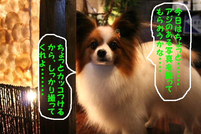 b0130018_18443780.jpg