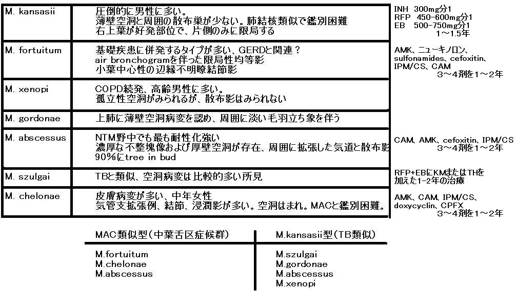 マイナーNTM特徴覚え書き_e0156318_1644291.jpg